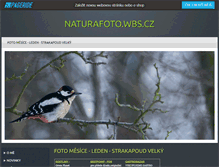 Tablet Preview of naturafoto.wbs.cz